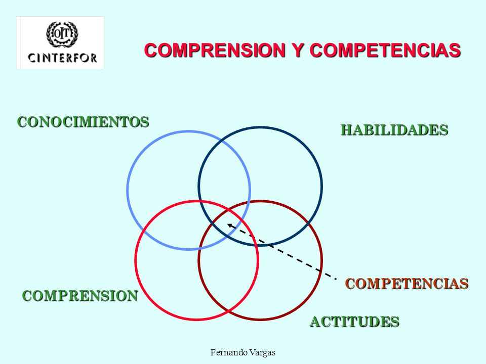 COMPRENSION Y COMPETENCIAS