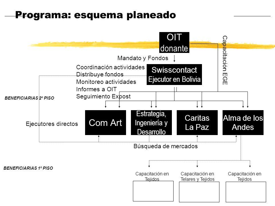 Programa: esquema planeado