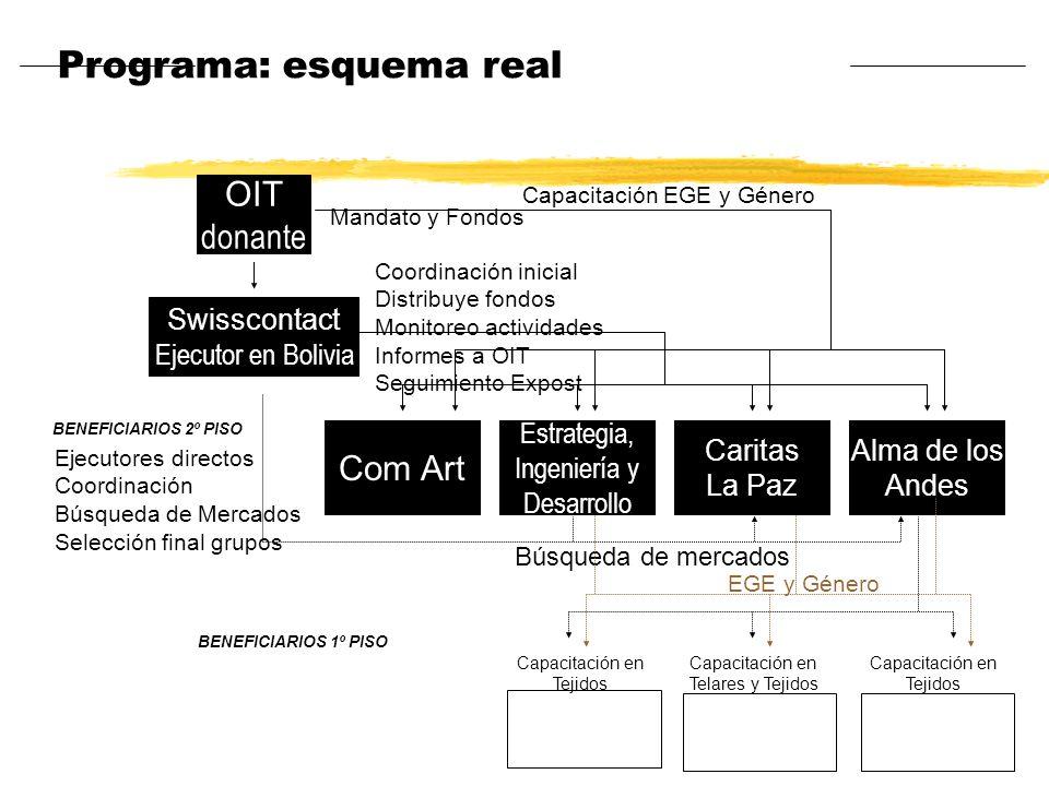 Programa: esquema real