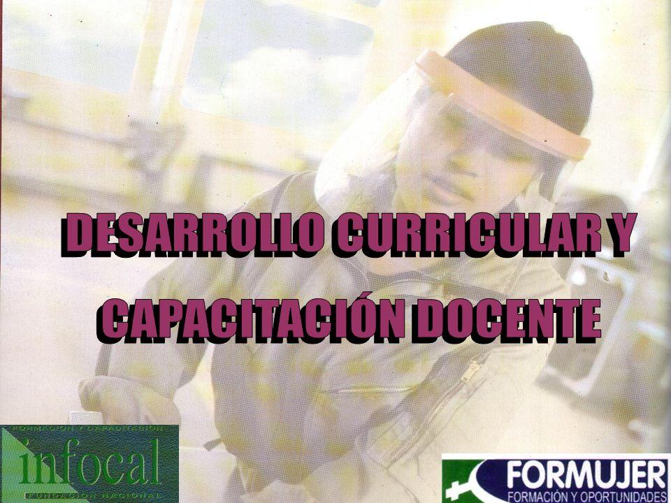 DESARROLLO CURRICULAR Y