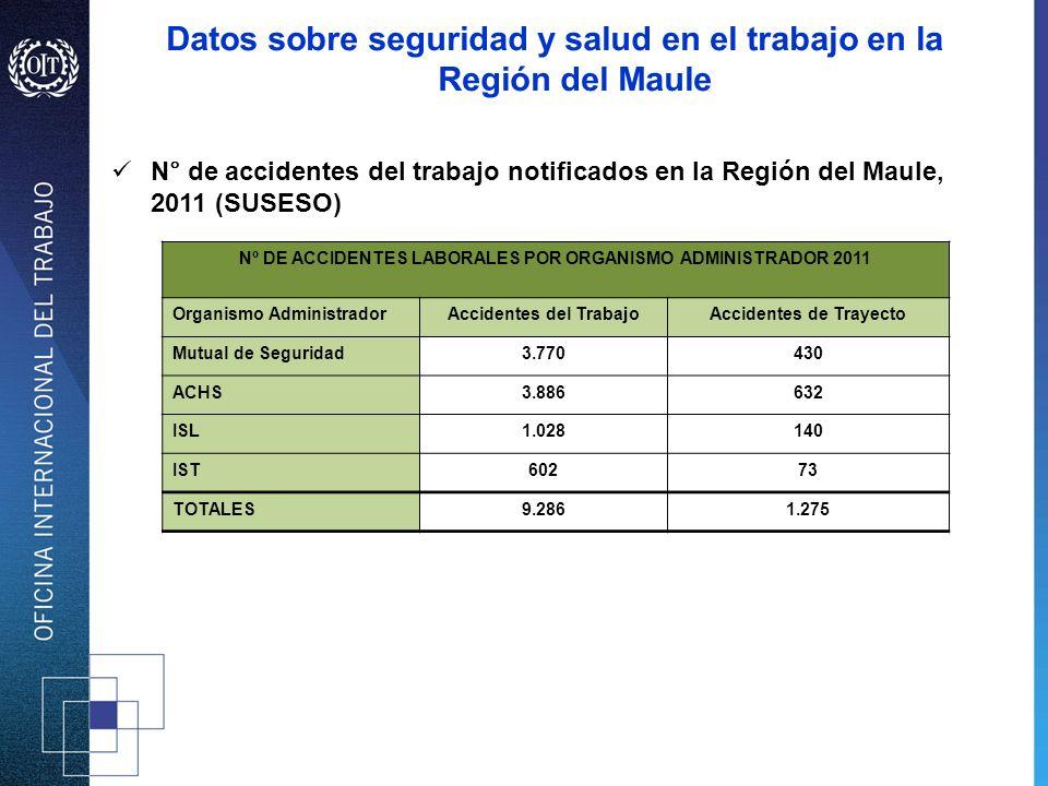 Datos sobre seguridad y salud en el trabajo en la Región del Maule