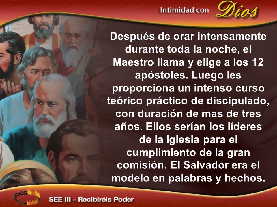 Después de orar intensamente durante toda la noche, el Maestro llama y elige a los 12 apóstoles.