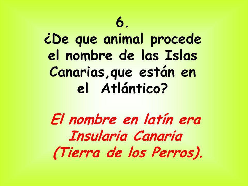 el nombre de las Islas Canarias,que están en el Atlántico