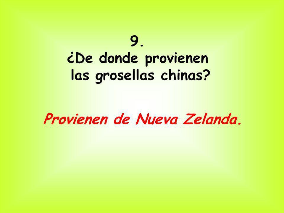 9. ¿De donde provienen las grosellas chinas Provienen de Nueva Zelanda.