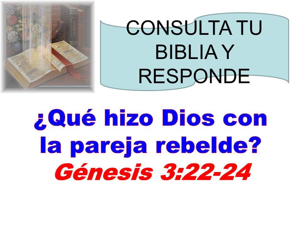 ¿Qué hizo Dios con la pareja rebelde Génesis 3:22-24