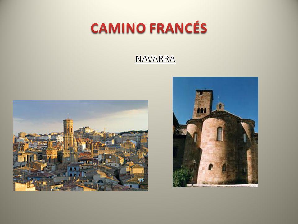 CAMINO FRANCÉS NAVARRA