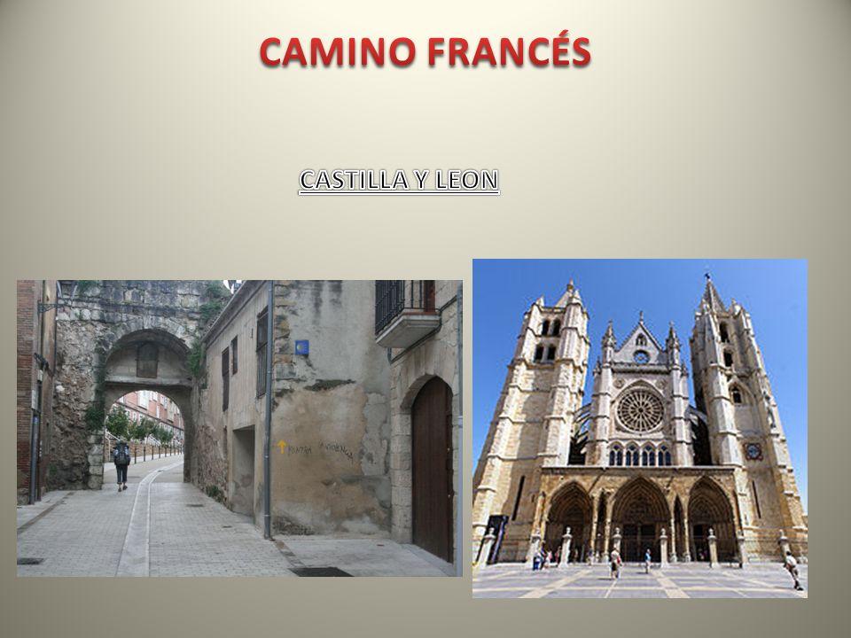 CAMINO FRANCÉS CASTILLA Y LEON