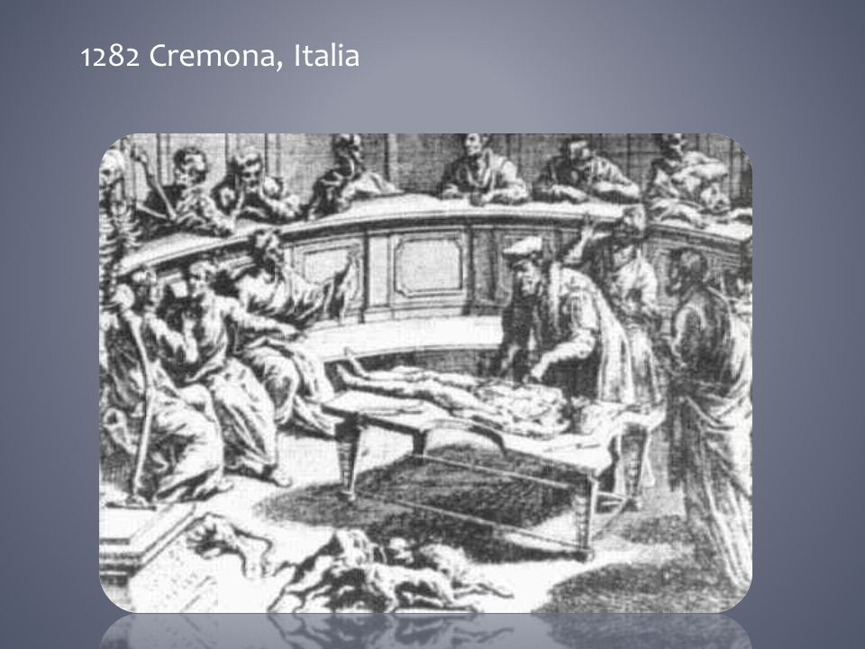 1282 Cremona, Italia