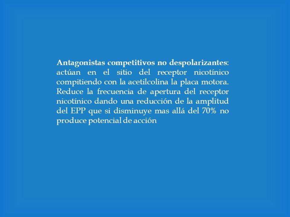 Antagonistas competitivos no despolarizantes: actúan en el sitio del receptor nicotínico compitiendo con la acetilcolina la placa motora.