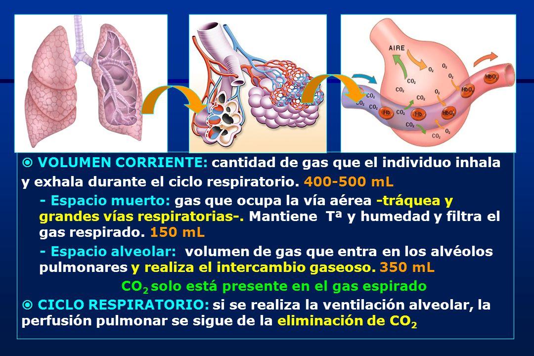 CO2 solo está presente en el gas espirado