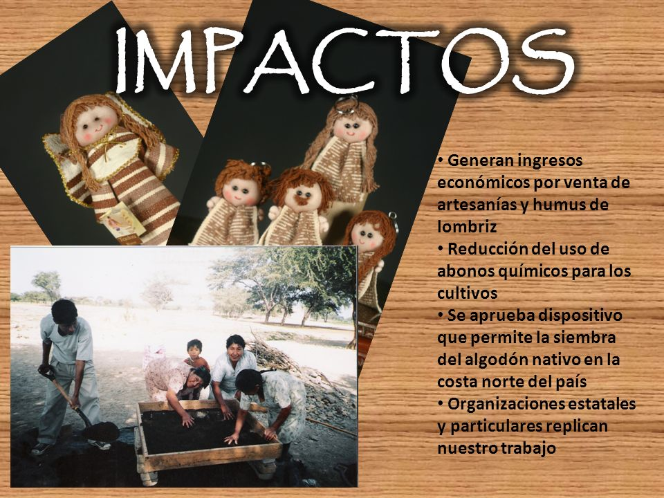 IMPACTOS Generan ingresos económicos por venta de artesanías y humus de lombriz. Reducción del uso de abonos químicos para los cultivos.