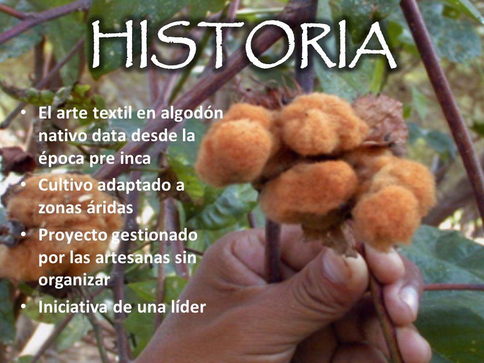 HISTORIA El arte textil en algodón nativo data desde la época pre inca