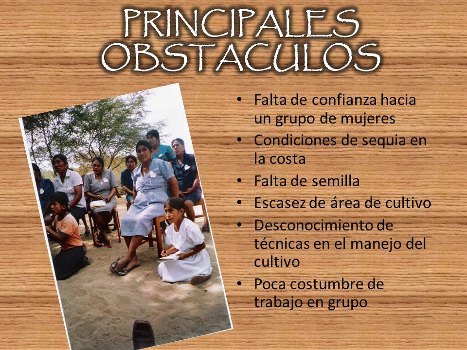 PRINCIPALES OBSTACULOS