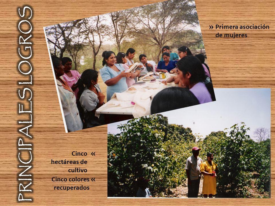 PRINCIPALES LOGROS » « Primera asociación de mujeres