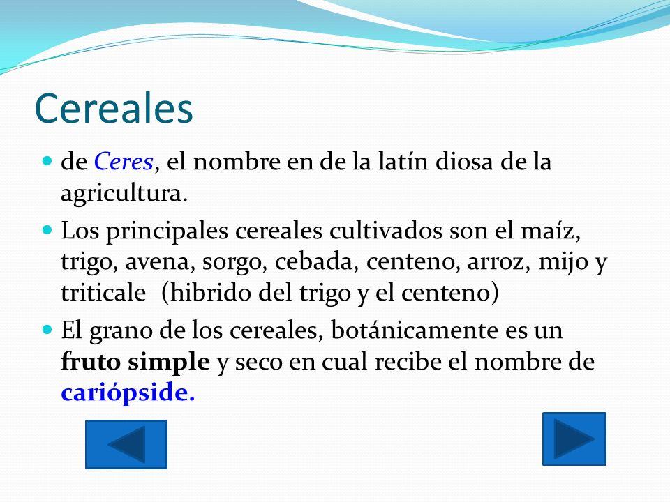 Cereales de Ceres, el nombre en de la latín diosa de la agricultura.