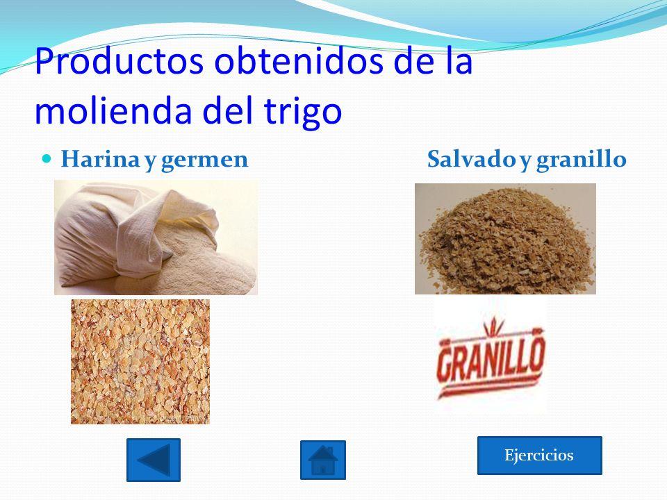 Productos obtenidos de la molienda del trigo