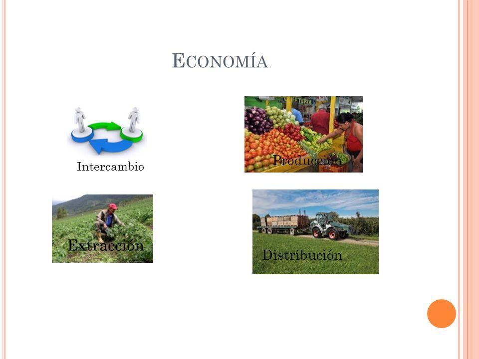 Economía Producción Intercambio Extracción Distribución