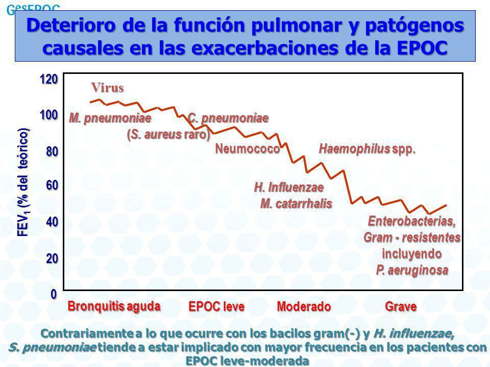 Deterioro de la función pulmonar y patógenos causales en las exacerbaciones de la EPOC
