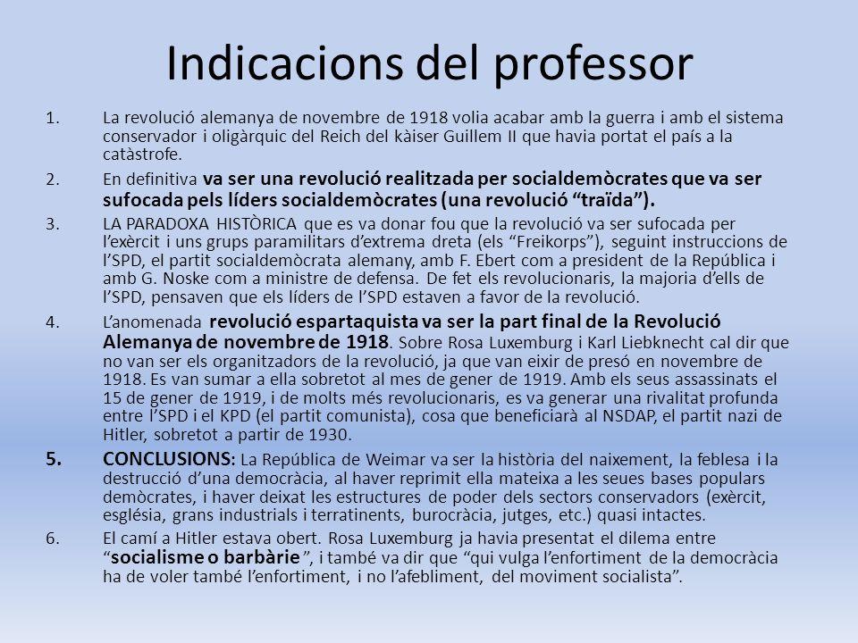 Indicacions del professor