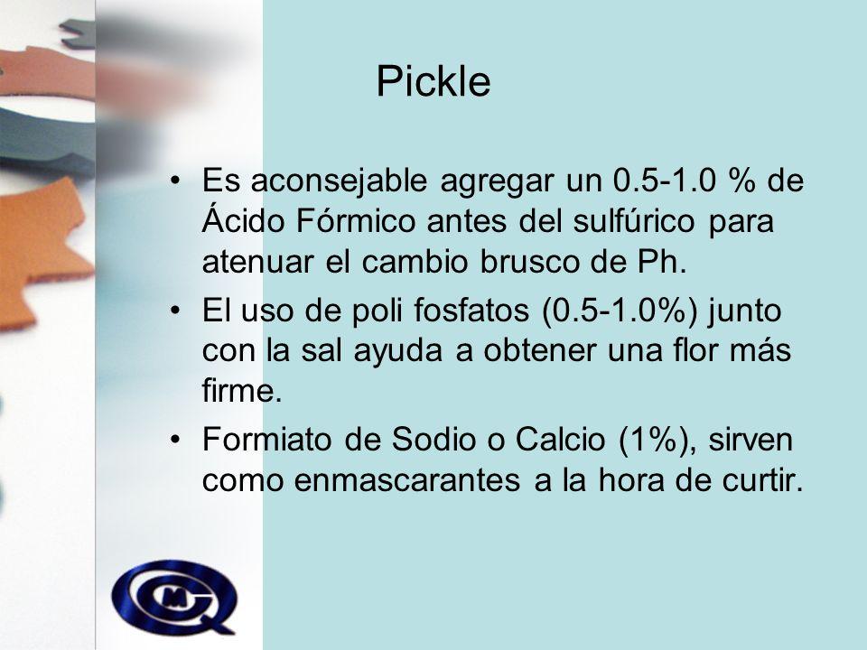 Pickle Es aconsejable agregar un 0.5-1.0 % de Ácido Fórmico antes del sulfúrico para atenuar el cambio brusco de Ph.