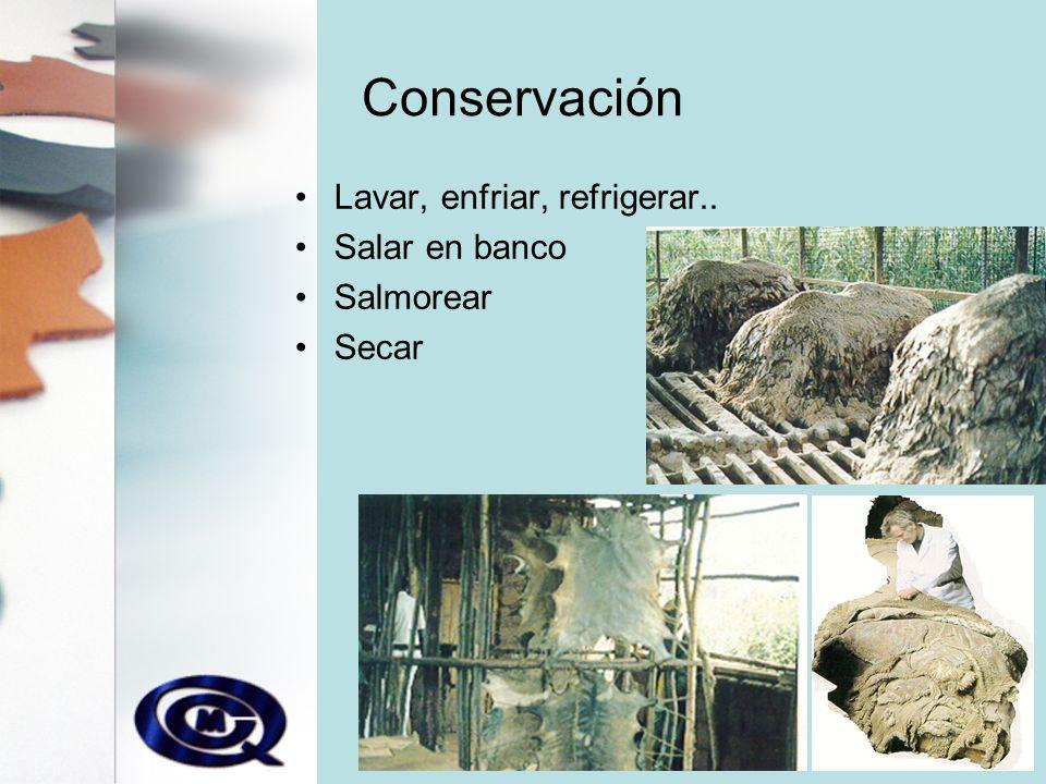 Conservación Lavar, enfriar, refrigerar.. Salar en banco Salmorear