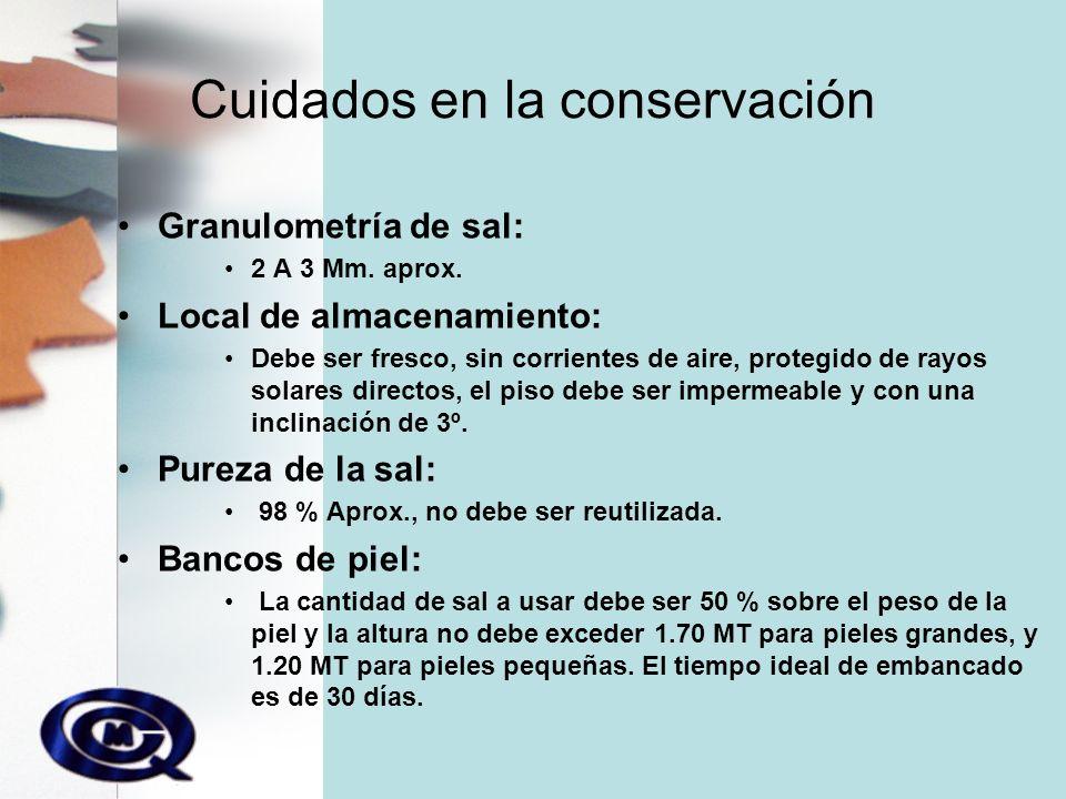 Cuidados en la conservación