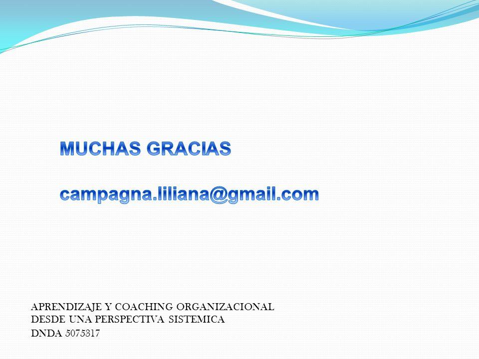 MUCHAS GRACIAS campagna.liliana@gmail.com