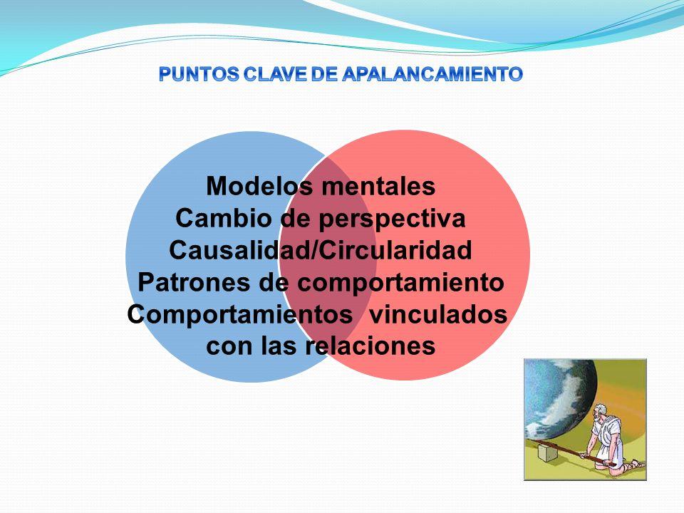 Causalidad/Circularidad Patrones de comportamiento