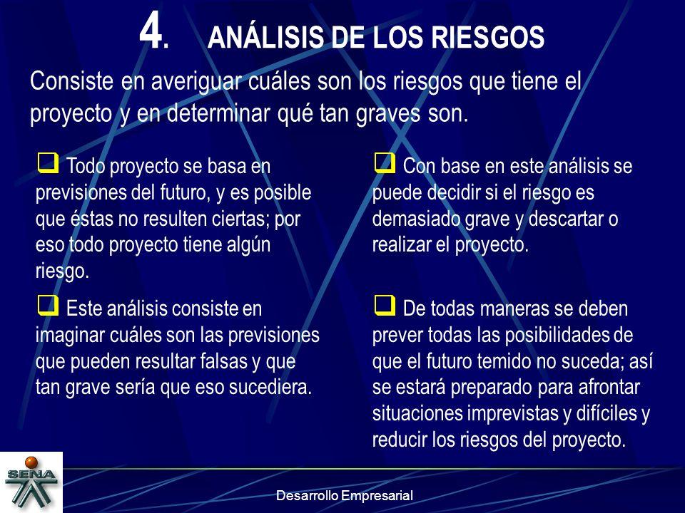 4. ANÁLISIS DE LOS RIESGOS
