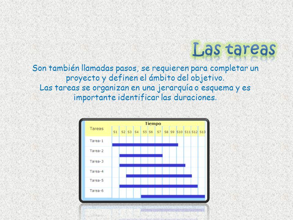Las tareasSon también llamadas pasos, se requieren para completar un proyecto y definen el ámbito del objetivo.