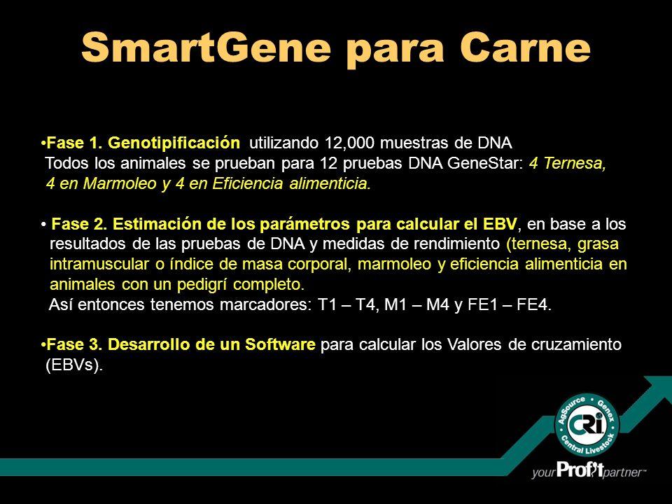 SmartGene para CarneFase 1. Genotipificación utilizando 12,000 muestras de DNA.
