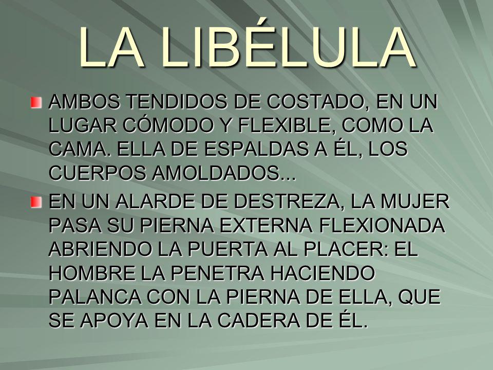 LA LIBÉLULA AMBOS TENDIDOS DE COSTADO, EN UN LUGAR CÓMODO Y FLEXIBLE, COMO LA CAMA. ELLA DE ESPALDAS A ÉL, LOS CUERPOS AMOLDADOS...