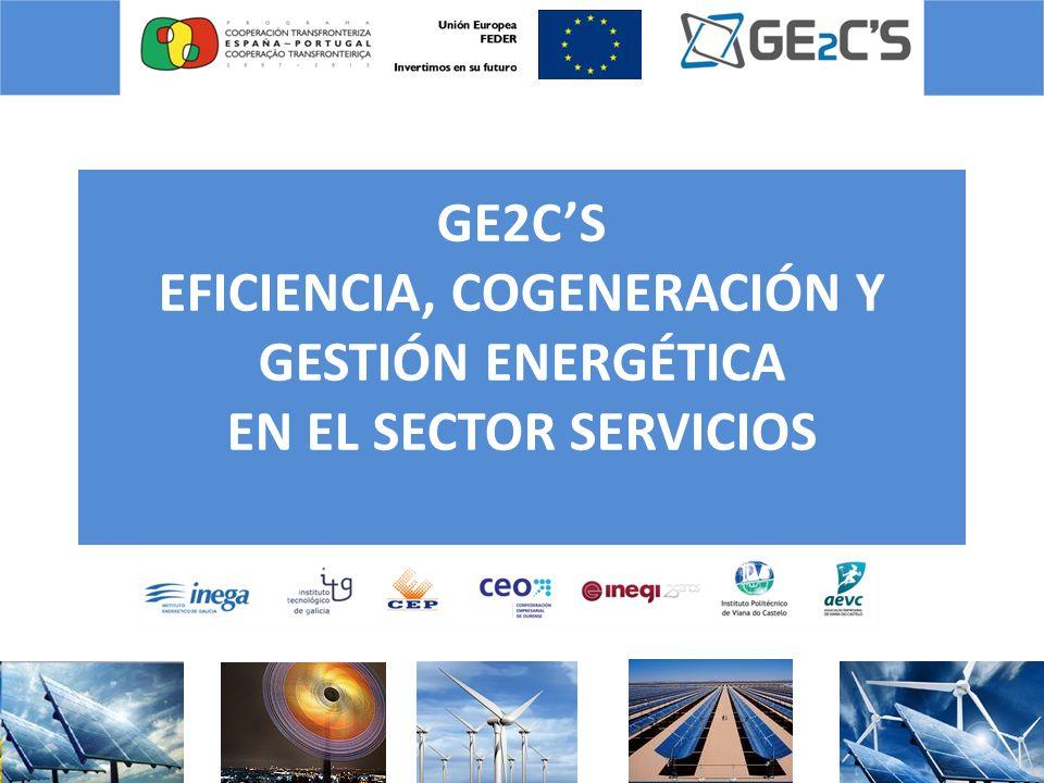 GE2C'S EFICIENCIA, COGENERACIÓN Y GESTIÓN ENERGÉTICA EN EL SECTOR SERVICIOS