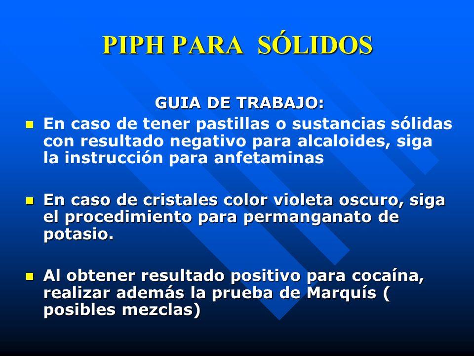 PIPH PARA SÓLIDOS GUIA DE TRABAJO: