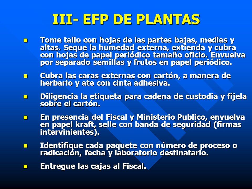 III- EFP DE PLANTAS