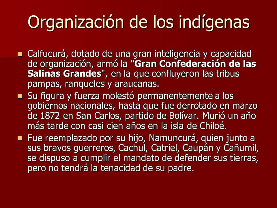 Organización de los indígenas