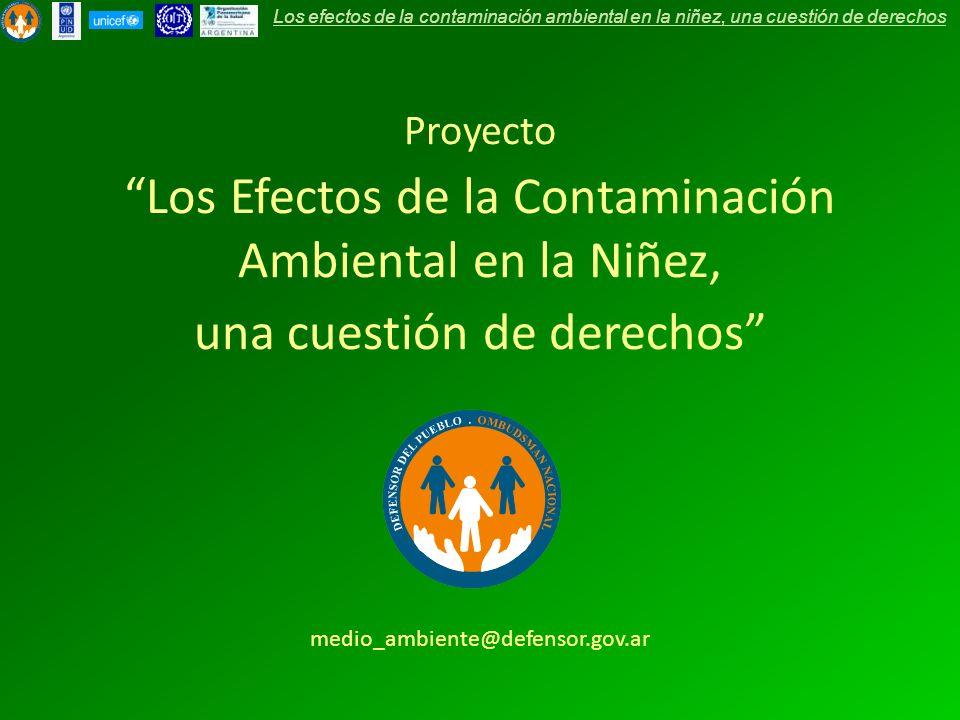 Los Efectos de la Contaminación Ambiental en la Niñez,
