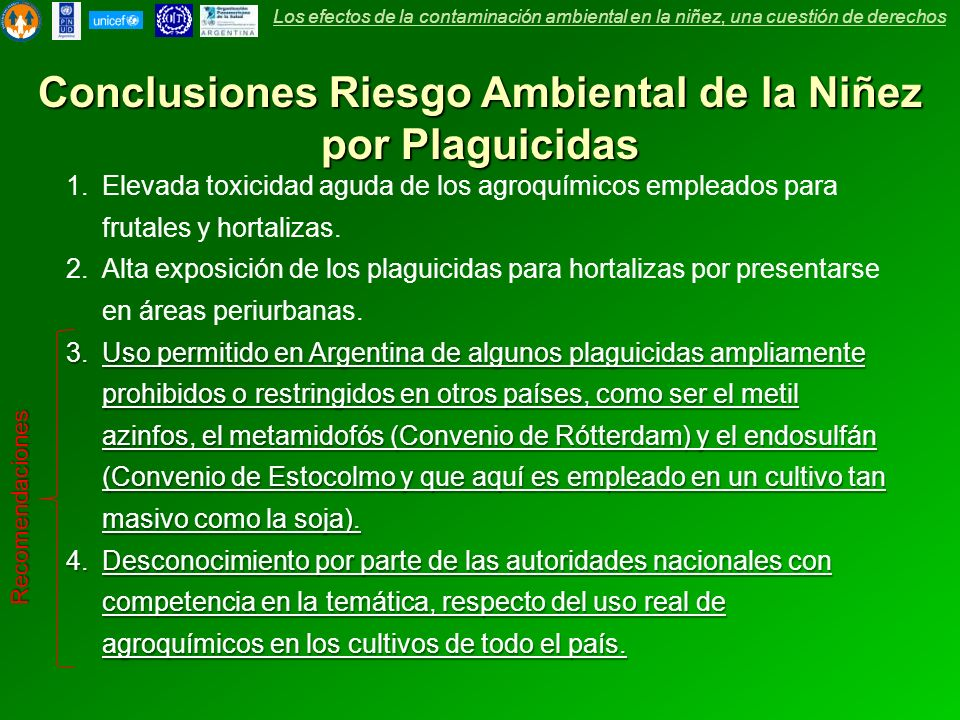 Conclusiones Riesgo Ambiental de la Niñez por Plaguicidas