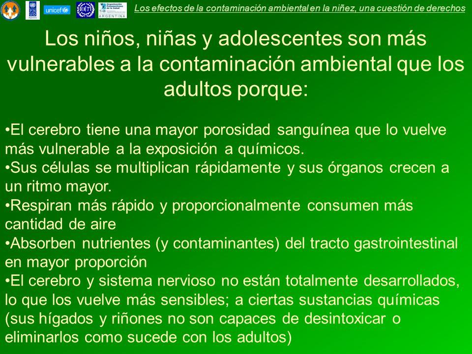 Los efectos de la contaminación ambiental en la niñez, una cuestión de derechos