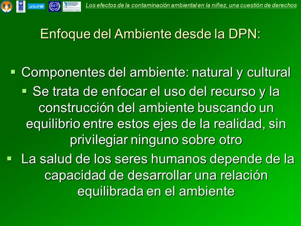 Enfoque del Ambiente desde la DPN: