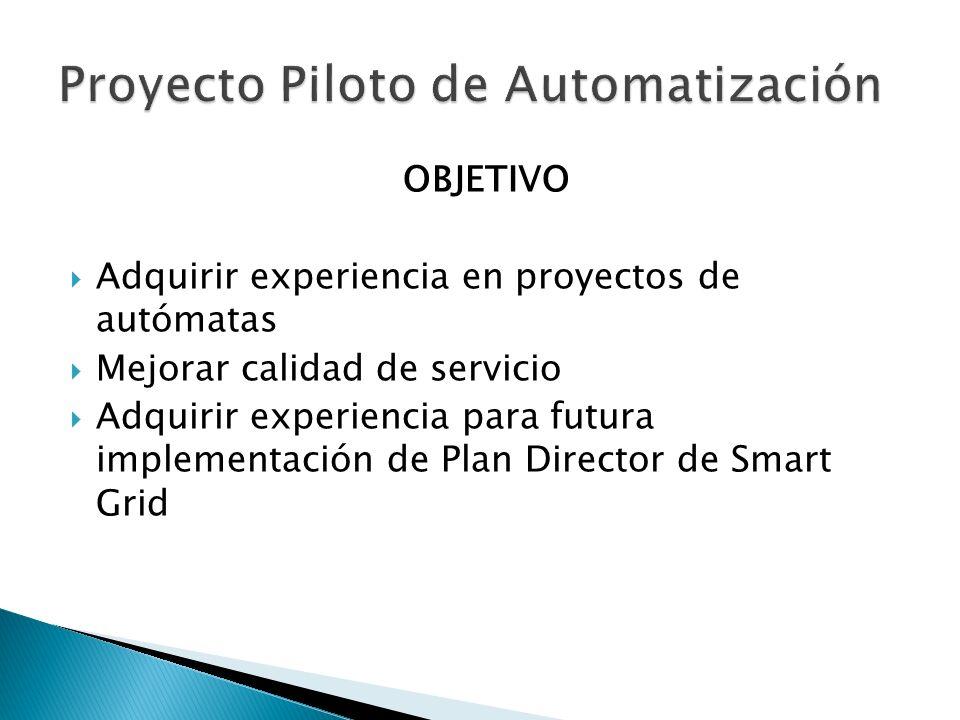 Proyecto Piloto de Automatización