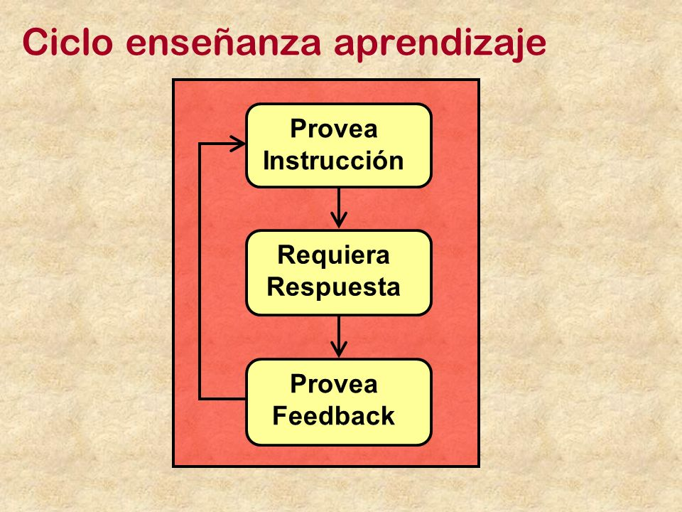 Ciclo enseñanza aprendizaje