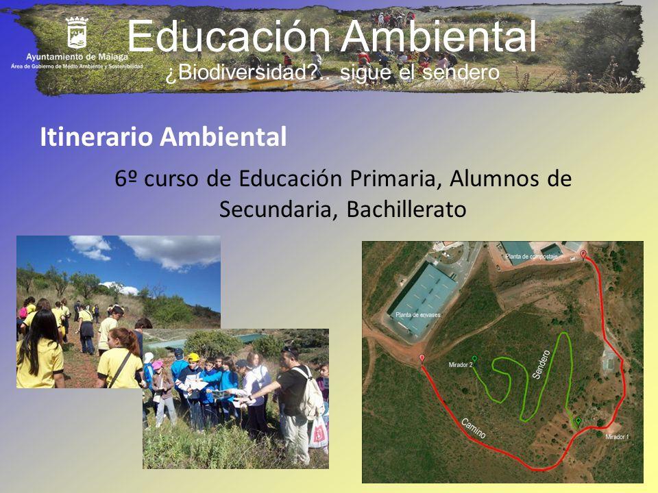 Educación Ambiental Itinerario Ambiental