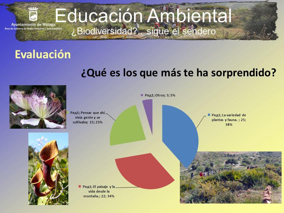 ¿Biodiversidad .. sigue el sendero
