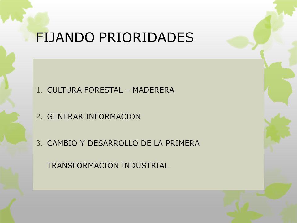 FIJANDO PRIORIDADES CULTURA FORESTAL – MADERERA GENERAR INFORMACION