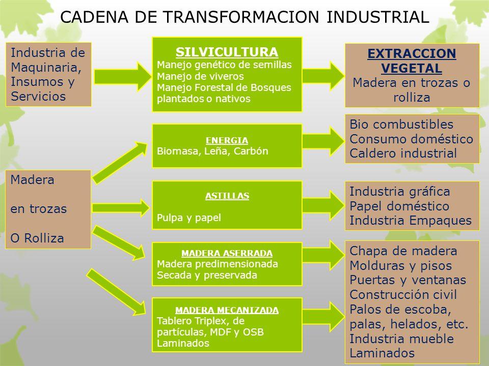 Transformacion industrial de productos forestales ppt for Manejo de viveros forestales
