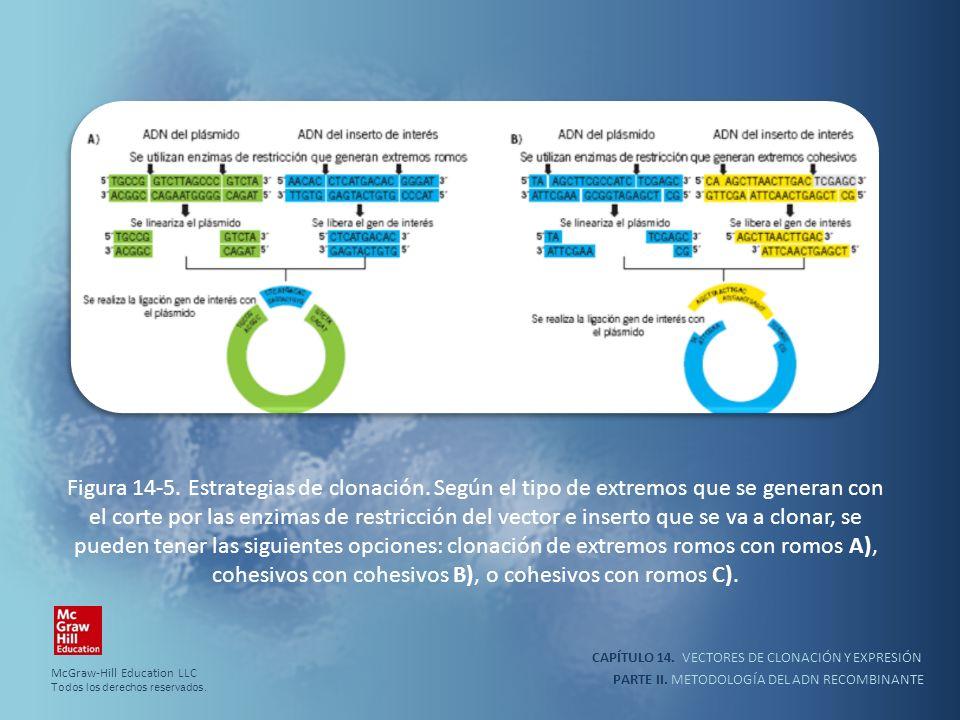 Figura 14-5. Estrategias de clonación