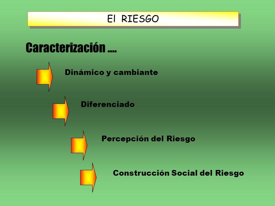 Caracterización .... El RIESGO Dinámico y cambiante Diferenciado