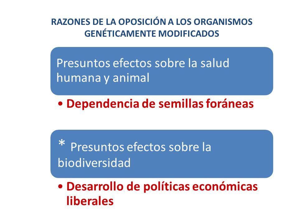 RAZONES DE LA OPOSICIÓN A LOS ORGANISMOS GENÉTICAMENTE MODIFICADOS