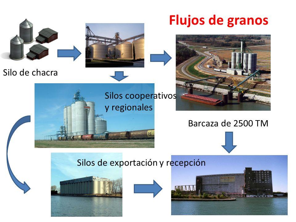 Flujos de granos Silo de chacra Silos cooperativos y regionales